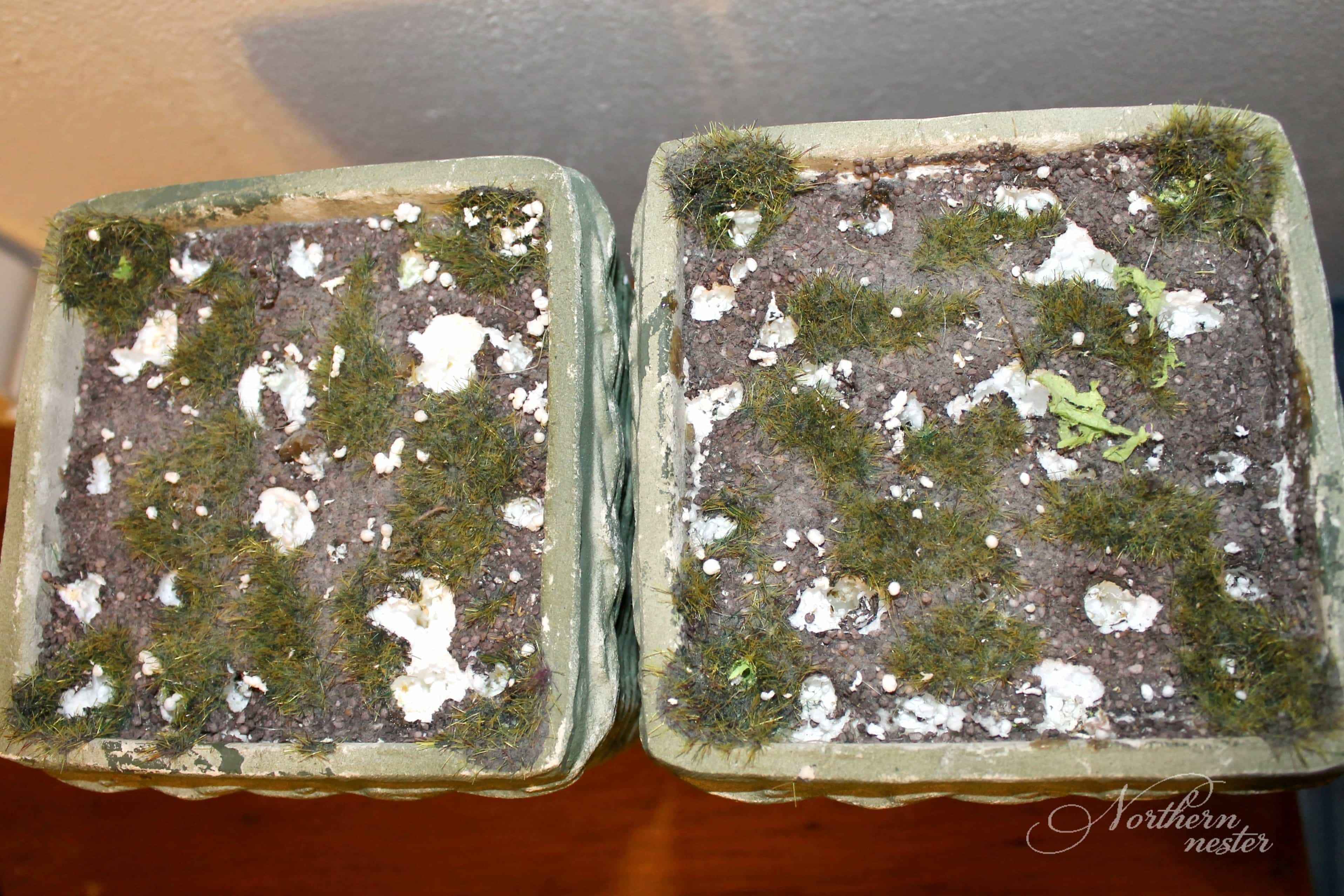 www ballard designs ballard designs bench diy ballard designs ballard designs topiary knock off northern nester topiary container