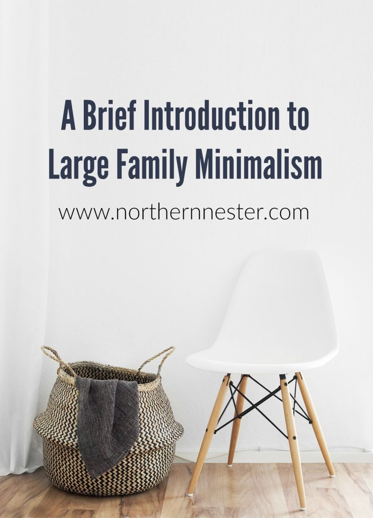 a-brief-introduction-to-large-family-minimalism