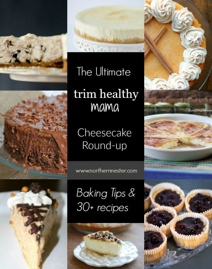 No Fail Low Carb Cheesecake Crust | THM: S