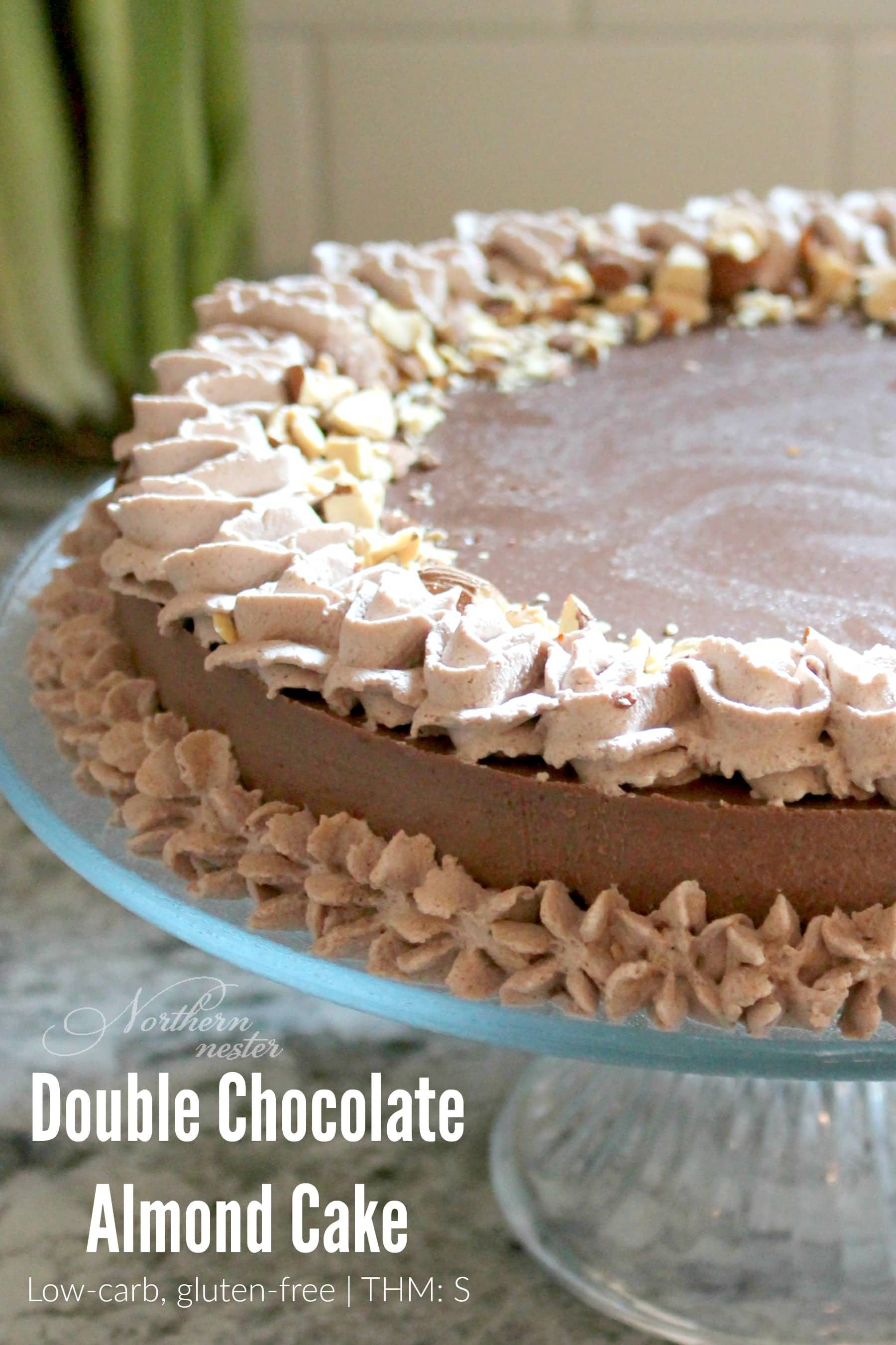 http://northernnester.com/double-chocolate-almond-cake-thm-s/