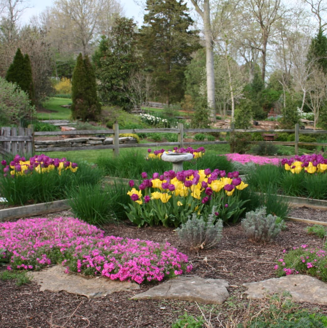How To Incorporate Bulbs Into Your Landscape Northern Nester