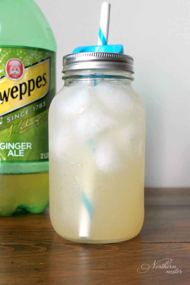 Ginger Ale GGMS | THM: Sipper