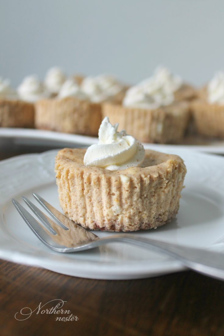 Mini Pumpkin Cheesecakes | THM: S