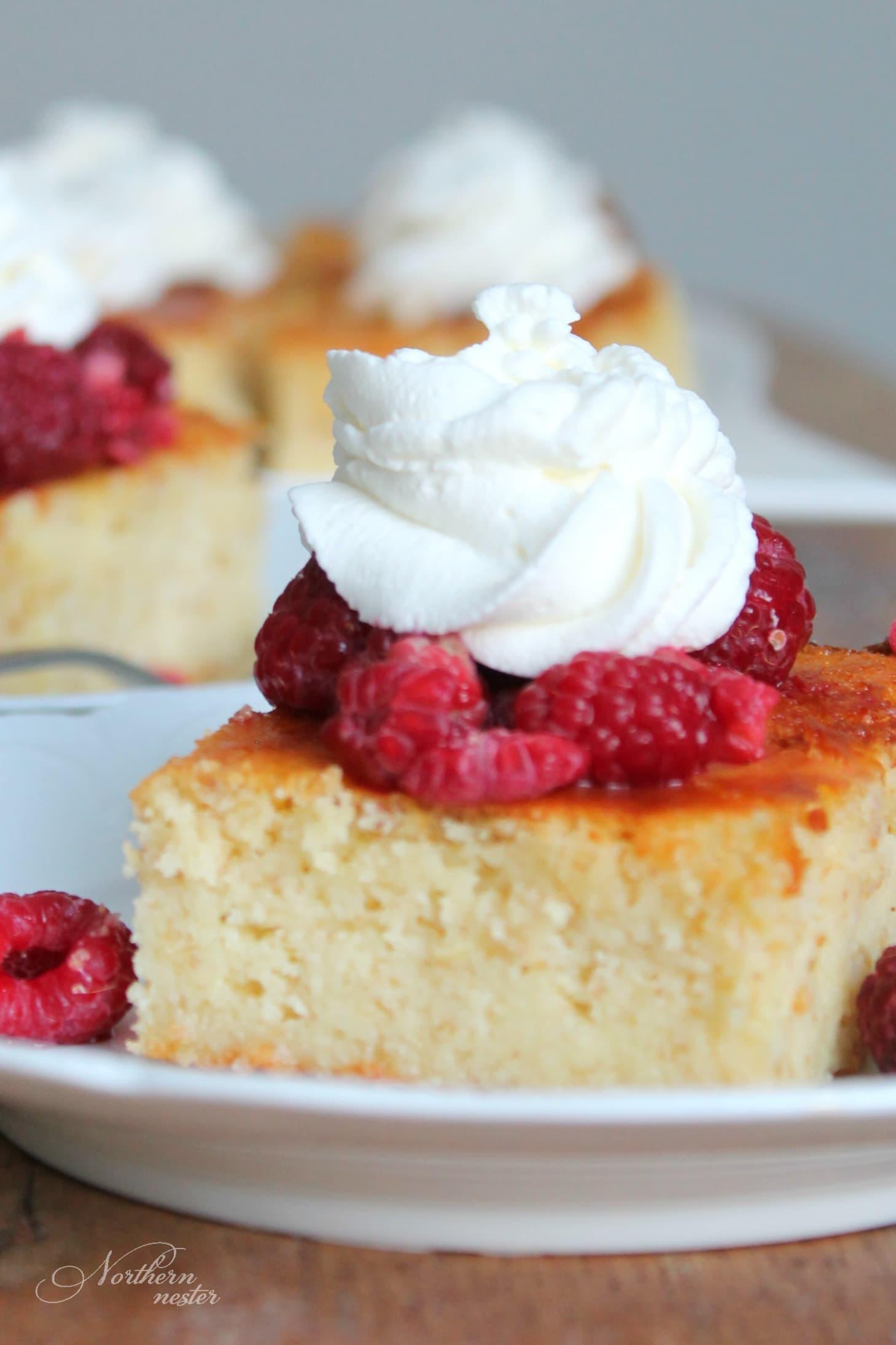 Low Calorie Lemon Yogurt Cake