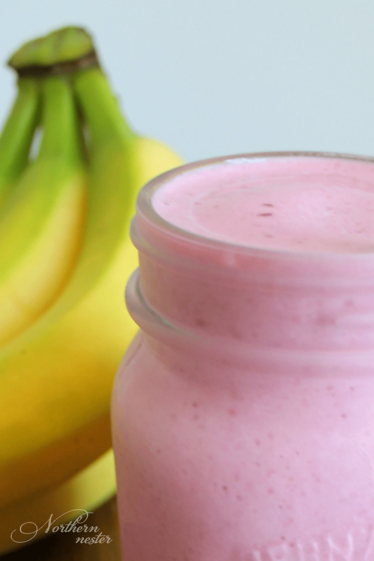 Berry Banana Baobab Smoothie | THM: E