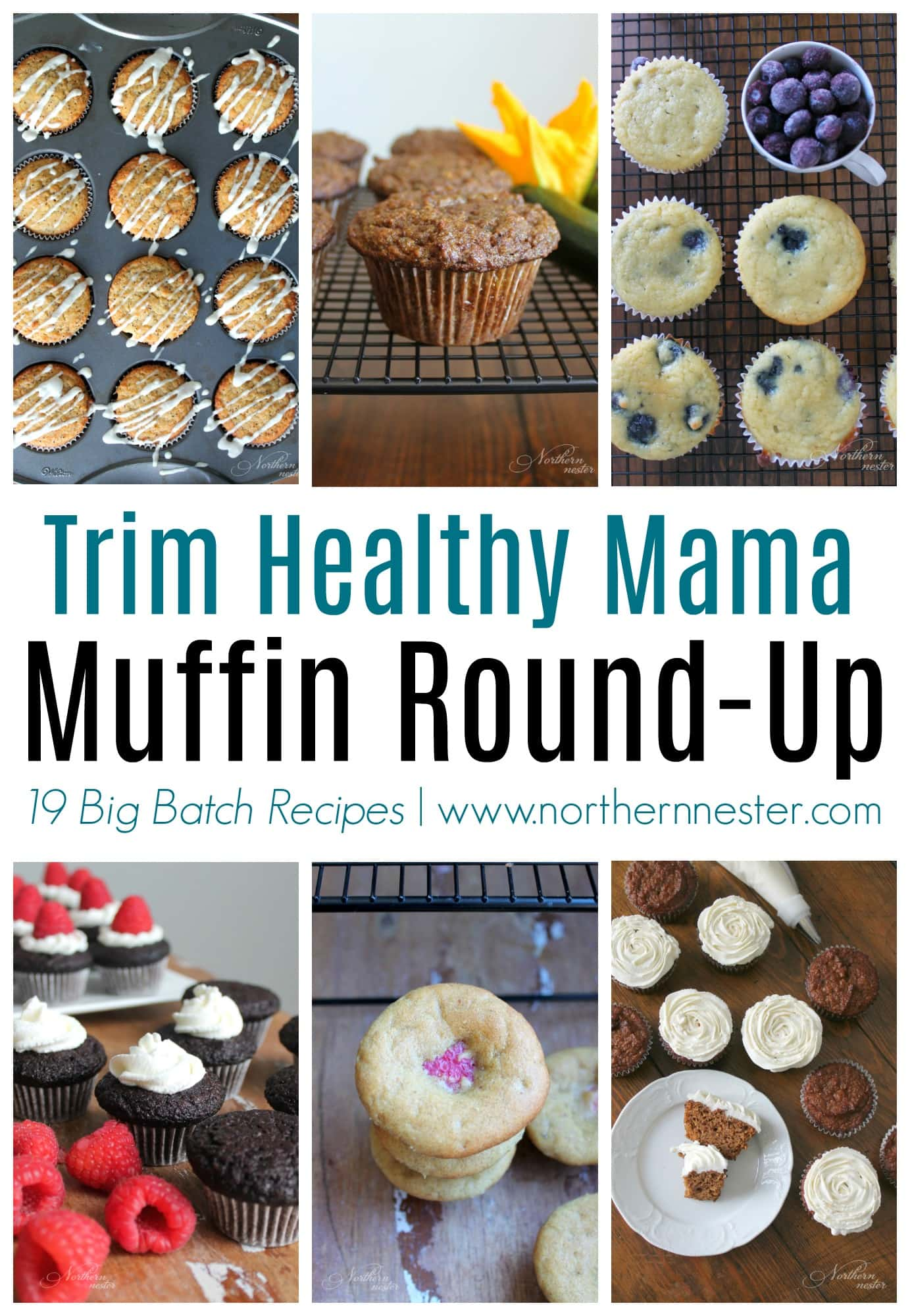 19 Big Batch Trim Healthy Mama Muffin Recipes Northern Nester