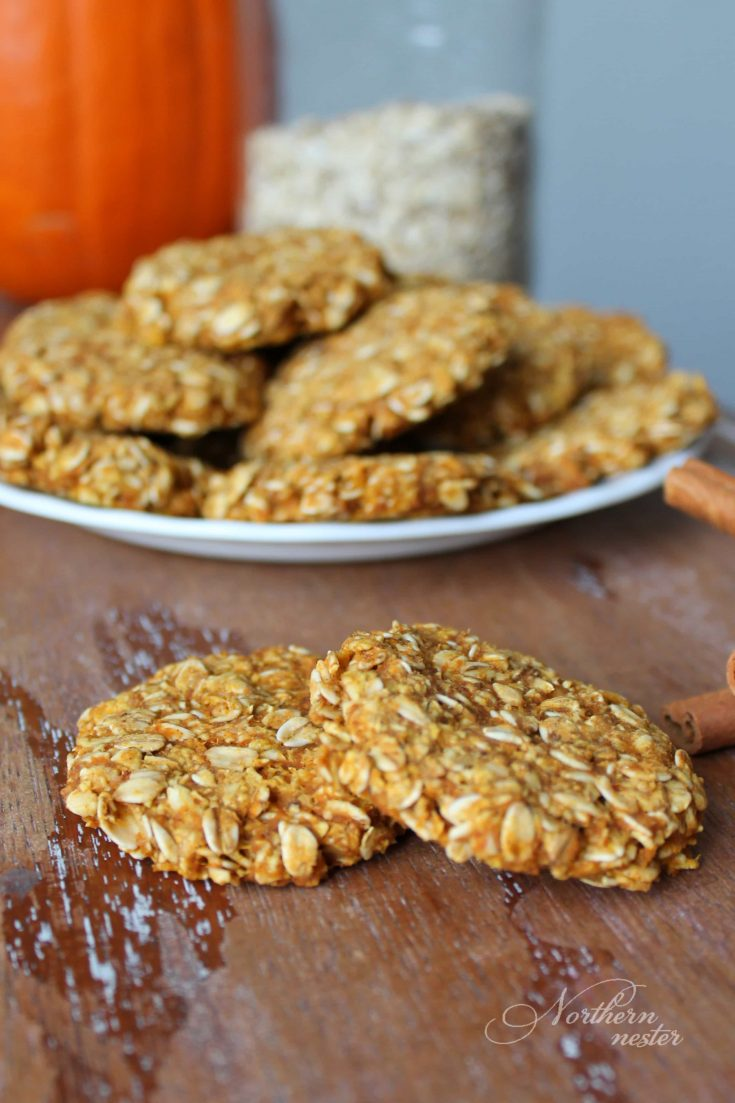 Pumpkin Oatmeal Cookie | THM: E