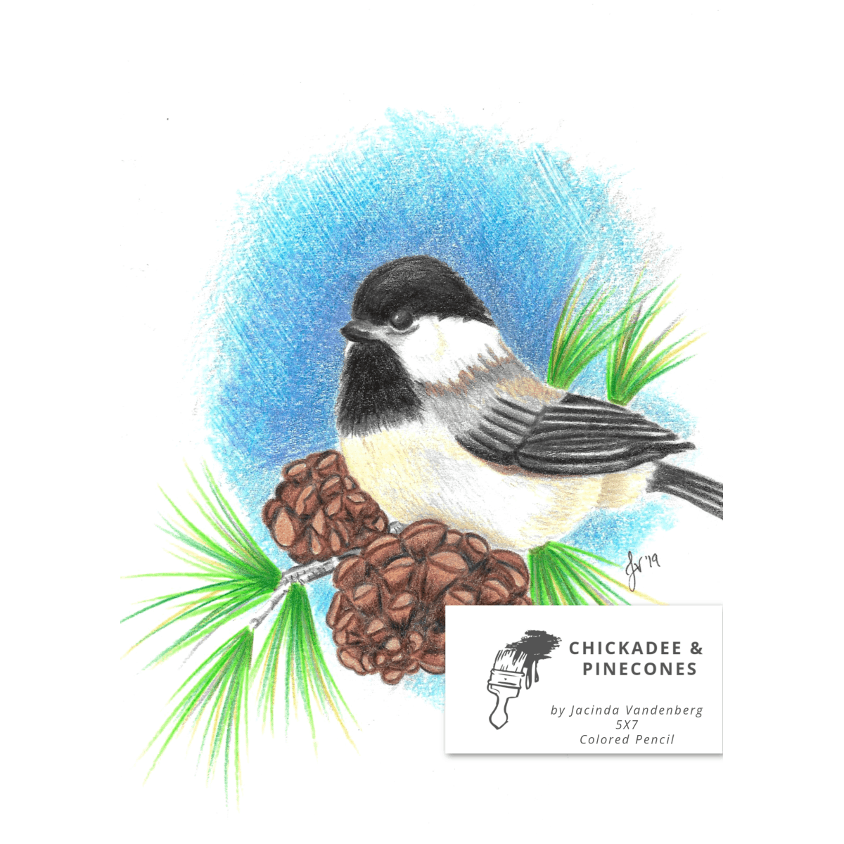 5x7 Chickadee & Pinecones in Colored Pencil