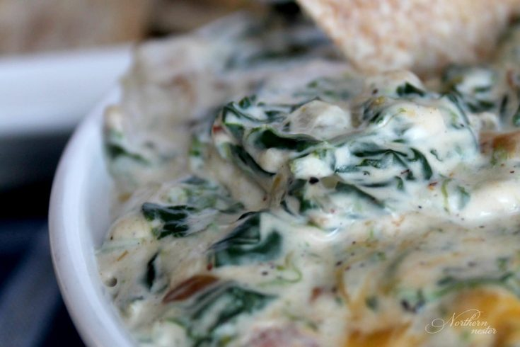 Kelsey's Spinach Dip Copycat Recipe | THM: S