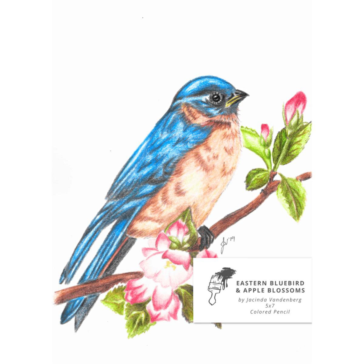 5x7 Eastern Bluebird & Apple Blossoms