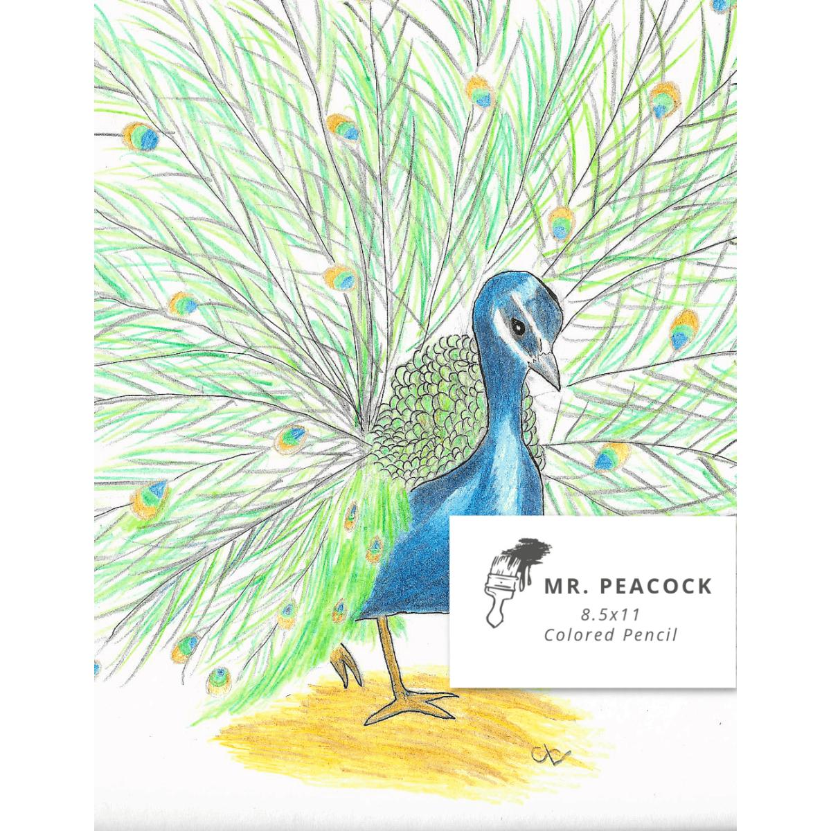 8.5x11 Mr. Peacock