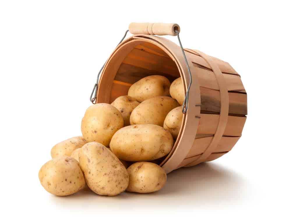 making potato dishes