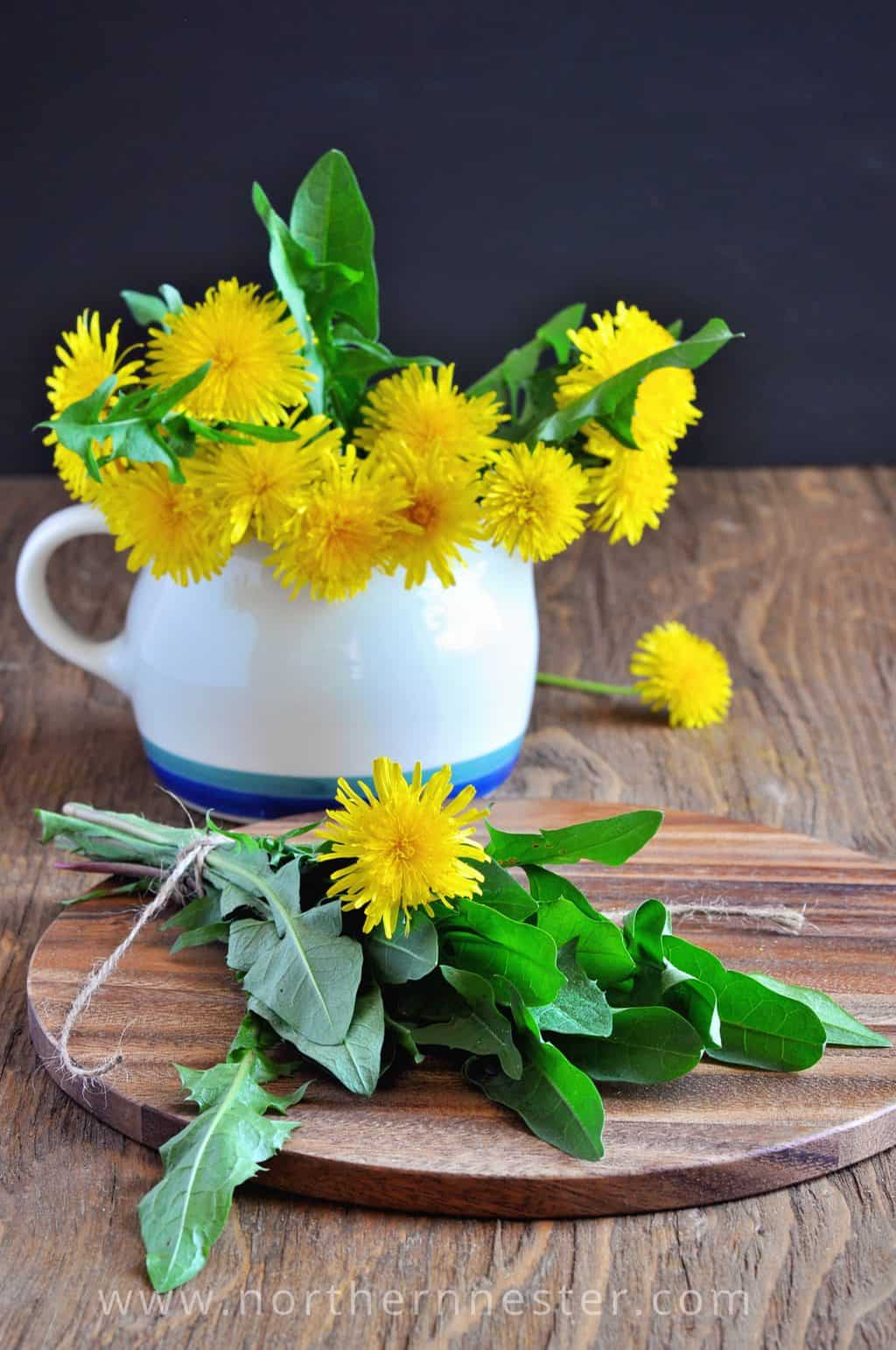ways to use dandelions