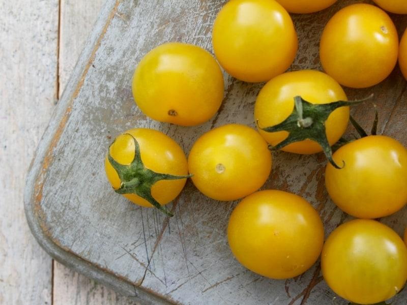 best variaties of tomatoes