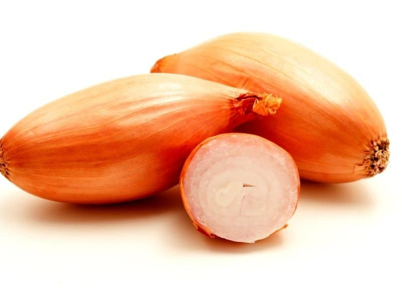 can you use shallots instead of onion