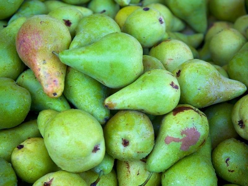 concorde pear