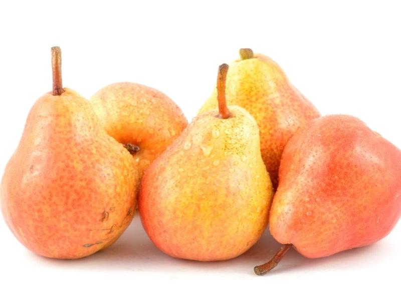 red andjou pear