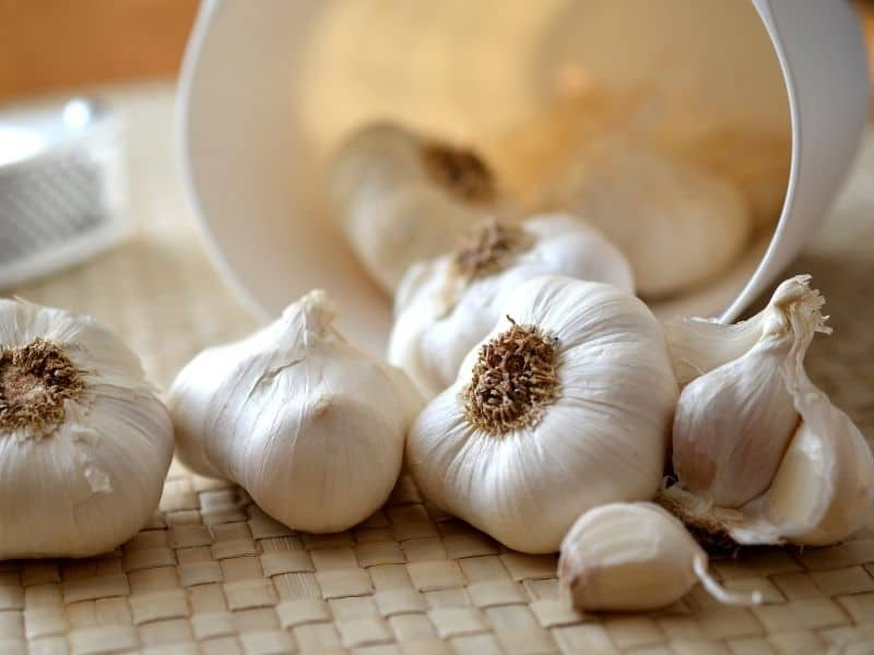 what is the best way to store garlic
