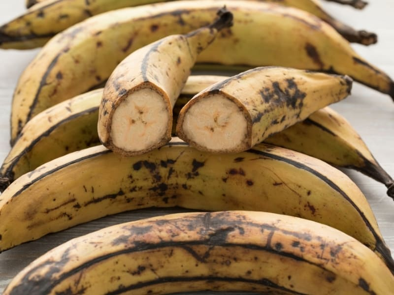 what is plantain