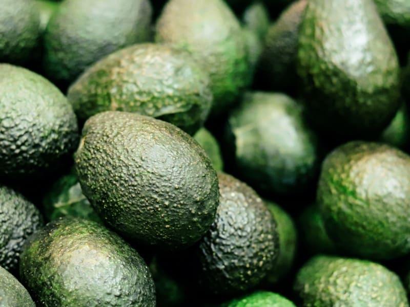 main types of avocado
