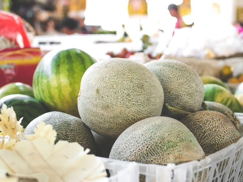 different types of melon