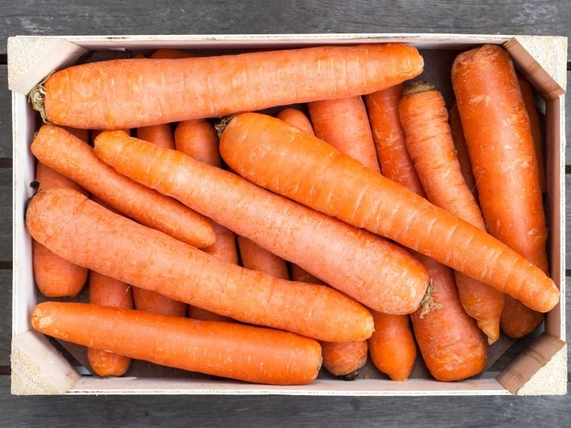 different ways to store carrots