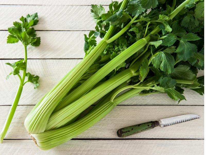 washing celery before storing