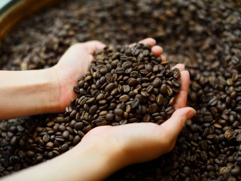 how long does coffee beans last