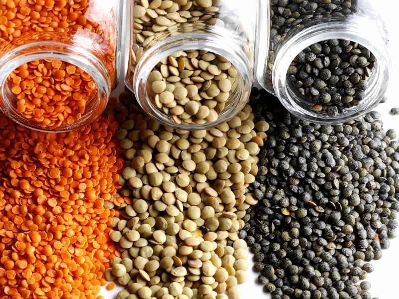 types of lentils