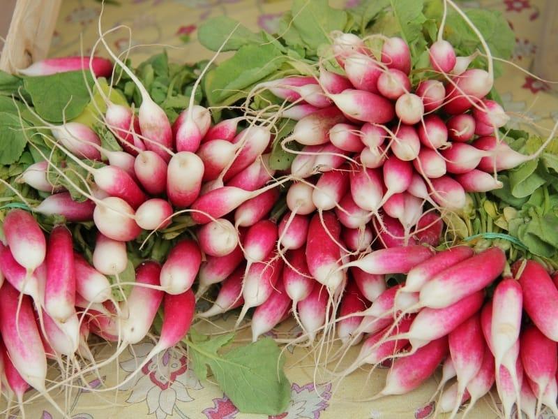 ways of storing radishes