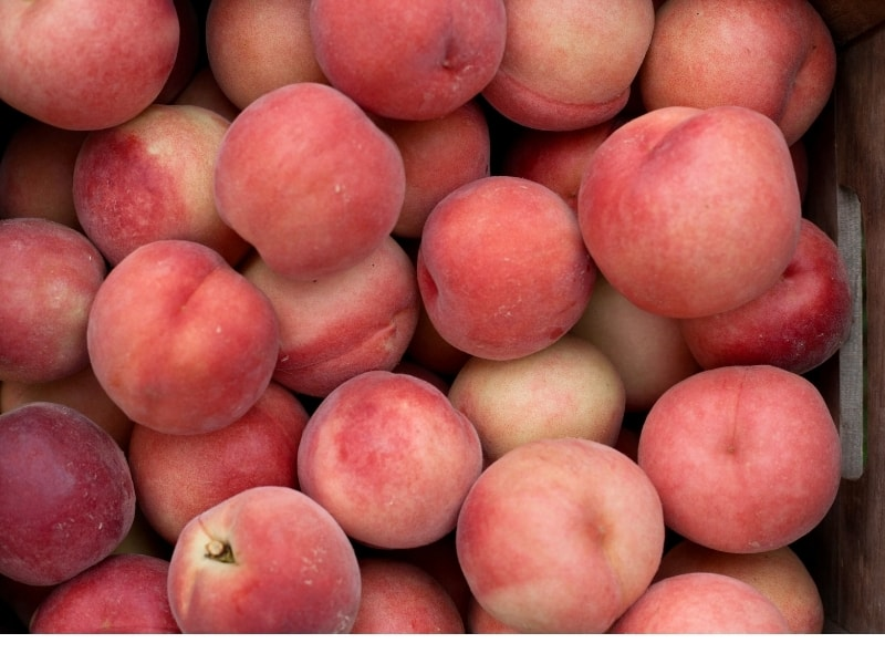 different types of peaches