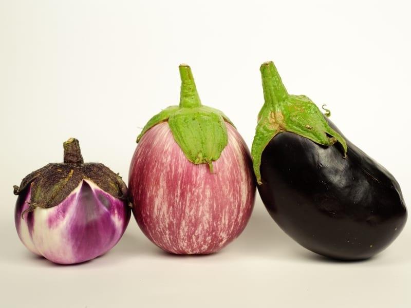 types of eggplant