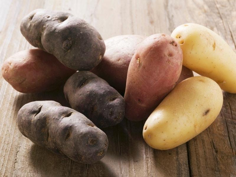 types of sweet potatoes