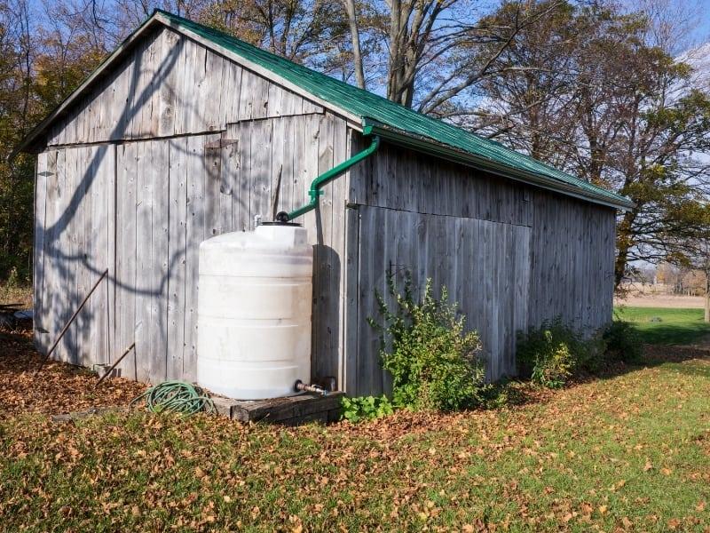 catch rainwater for gardening