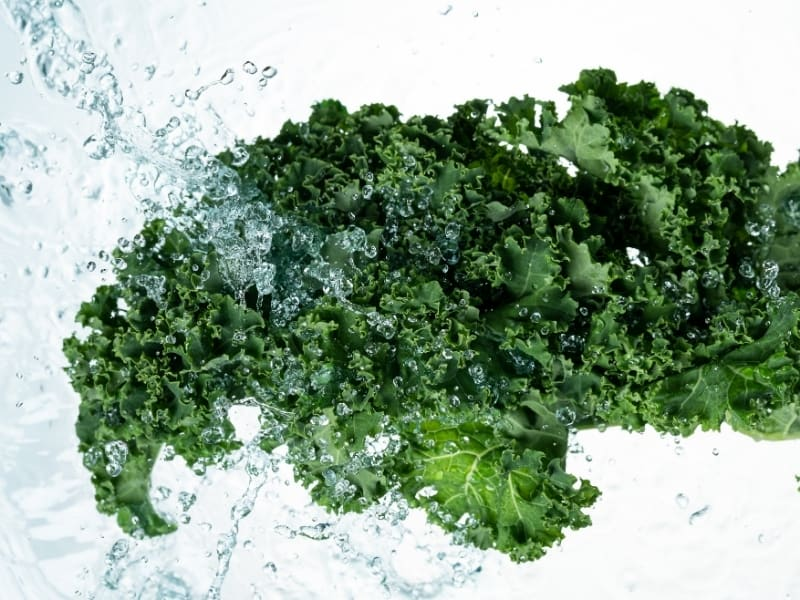 how to water kale