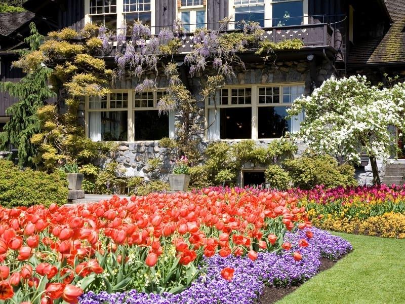 idea of backyard gardening
