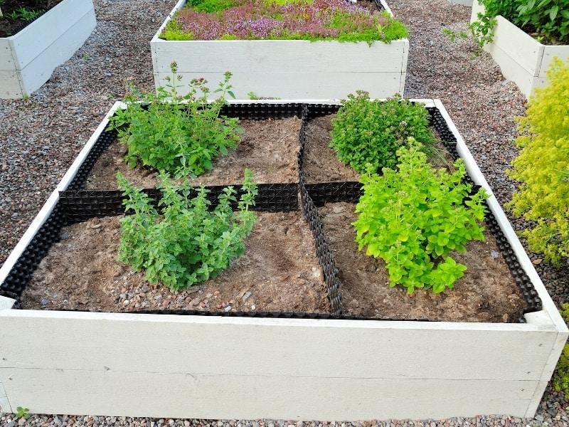 organic gardening origin