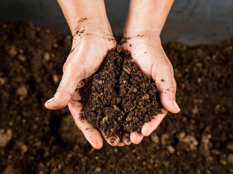 tips on composting at home