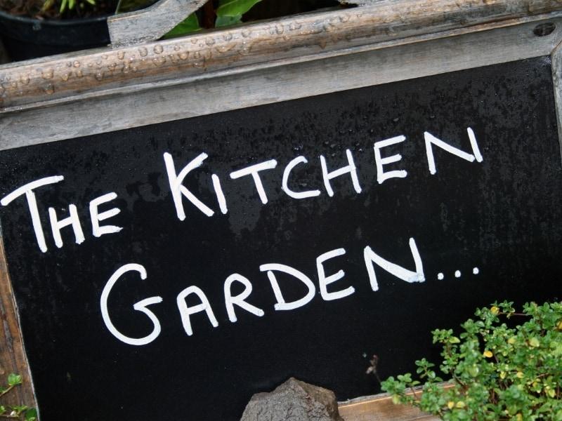 what is a kitchen garden