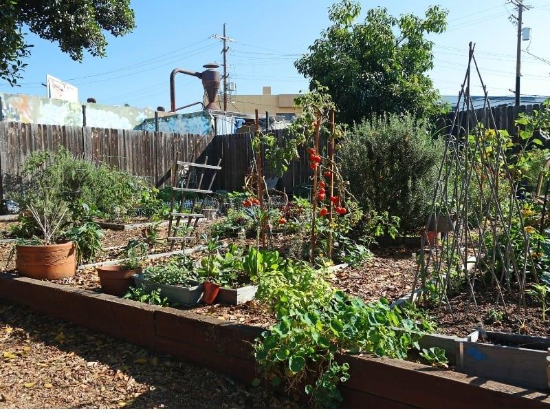 what is urban gardening