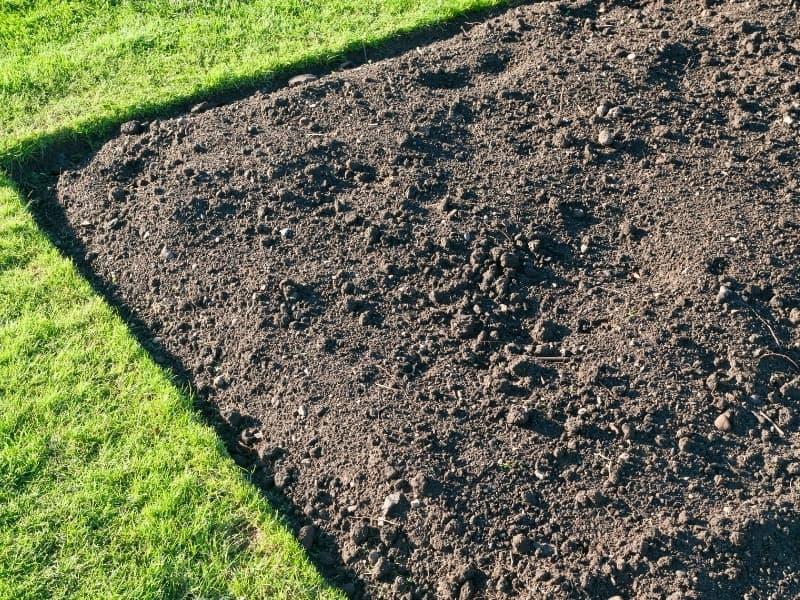 woodland garden soil
