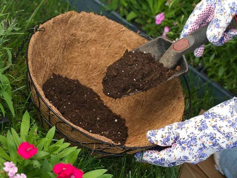how do you know if a potting soil go bad