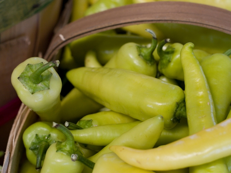 how to harvest banana peppers