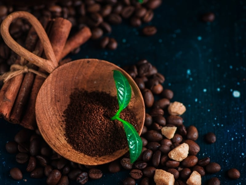 coffee grounds benefits for christmas cactus