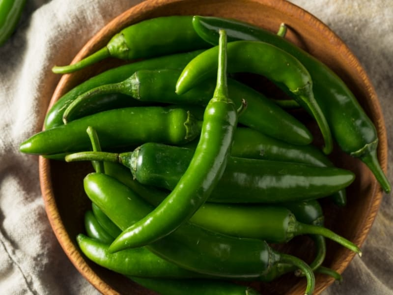 how to harvest serrano peppers