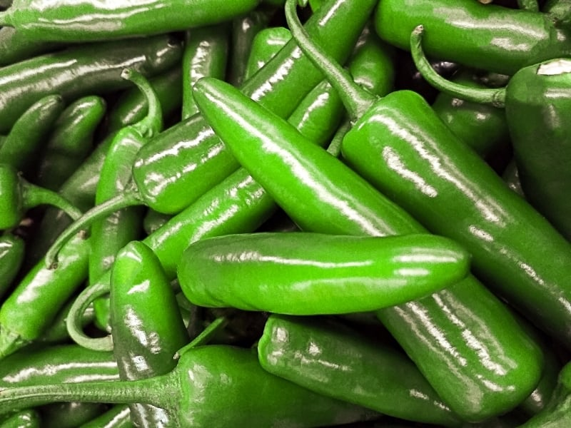 when to harvest serrano peppers